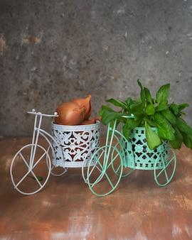 Gemüseset in dekorativen töpfen zwei veloviped mit lukas und spinat auf einem braunen holztisch