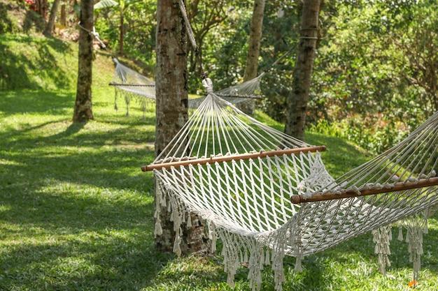 Gemütliche hängematten zwischen palmen in einem schönen tropischen garten in bali-insel