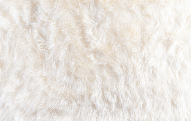Gemütlicher winterhintergrund aus wollteppich mit raum, draufsicht.