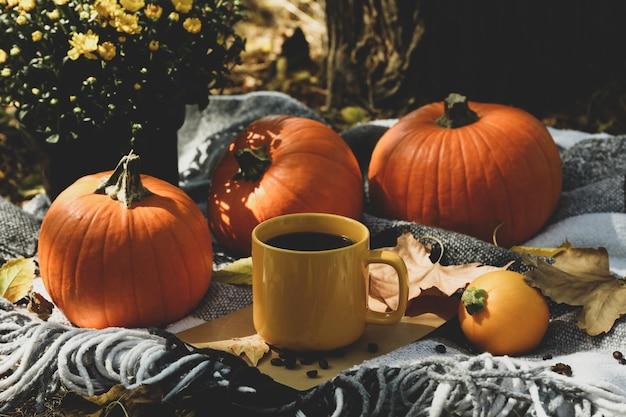 Gemütliches herbstkonzept mit kürbissen und tasse kaffee im freien