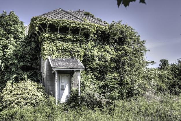 Gemütliches wohnhaus umgeben von viel grün