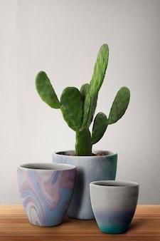 Gemusterte blumentöpfe mit cereus-kaktus
