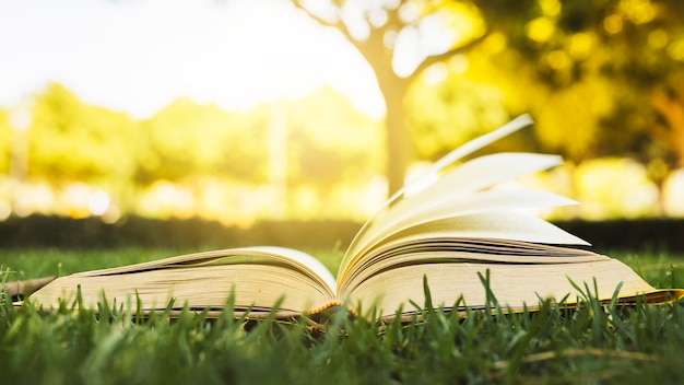 Geöffnetes buch auf gras am sonnenlicht