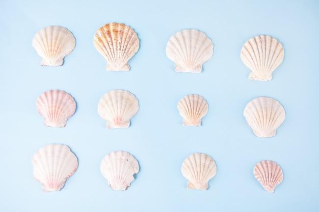 Geometrisches muster aus reihen von muscheln gleicher formen und farben. minimalistischer stil. kreative plakatkarte. tropisches badekurort wellnesskonzept des sommers