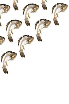 Geometrisches muster vom fischskelett, das gegessen wurde, essensreste