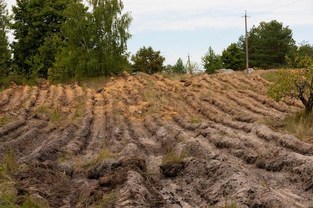 Gepflügtes gras als mittel zur bekämpfung von waldbränden.
