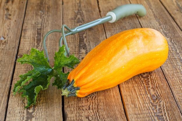 Gerade gepflückte zucchini mit grünen blättern und rechen auf alten holzbrettern. gerade geerntetes gemüse. Premium Fotos