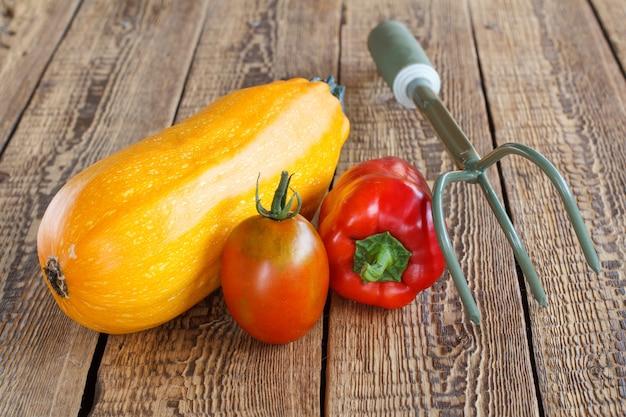 Gerade gepflückte zucchini, tomate, rote paprika und handrechen auf alten holzbrettern. gerade geerntetes gemüse.