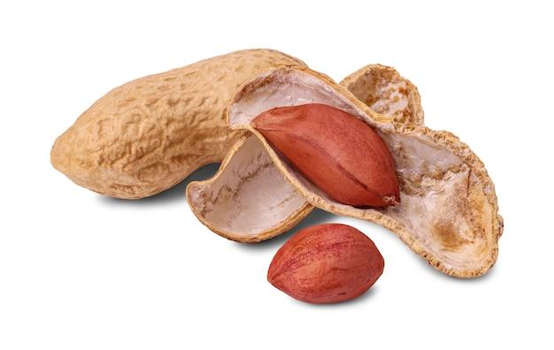 Geröstete erdnuss in der schale und geschälte erdnüsse lokalisiert auf weißem hintergrund. nahansicht.