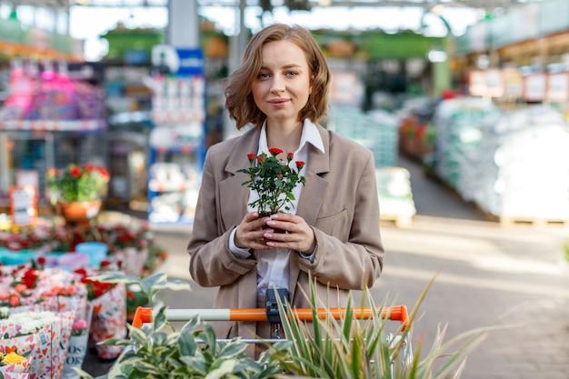Geschäftsfrau mit einkaufswagen, der blumenpflanzen für ihr haus / wohnung im gewächshaus wählt, eine dekorative rose in einem topf haltend
