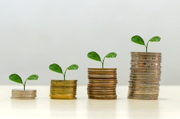 Geschäftskonzept von finanziellem wachstum und münzersparnis. zukünftige investitionsplanung und ruhestand. bäume auf münzen gestapelt