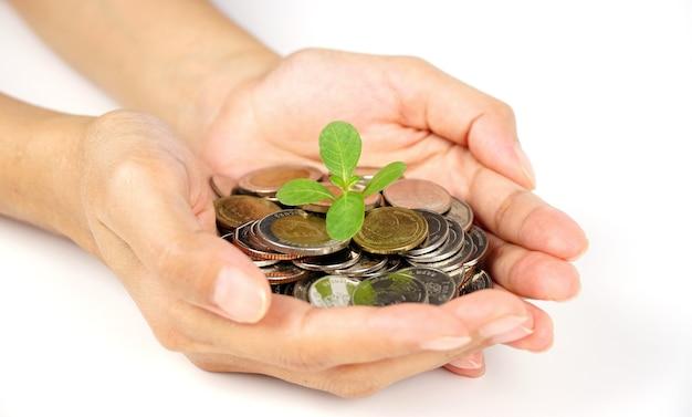 Geschäftsmann, der die pflanze hält, die aus einer handvoll münzen sprießt, finanzieren konzeptgeschäftshintergrund