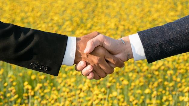 Geschäftsmann und geschäftsfrau, die hand rütteln