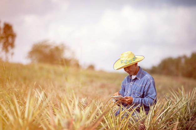 Geschäftsmannlandwirt, der tablette für die prüfung auf dem ananasgebiet hält