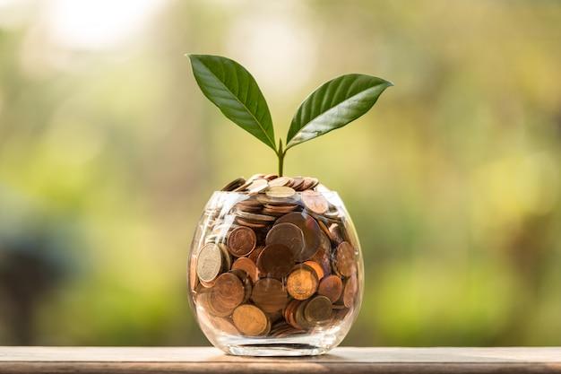 Geschäftswachstum bis konzept