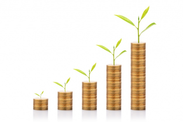 Geschäftswachstum und investitionskonzepte. baum wächst auf goldener münze lokalisiert auf weißem hintergrund