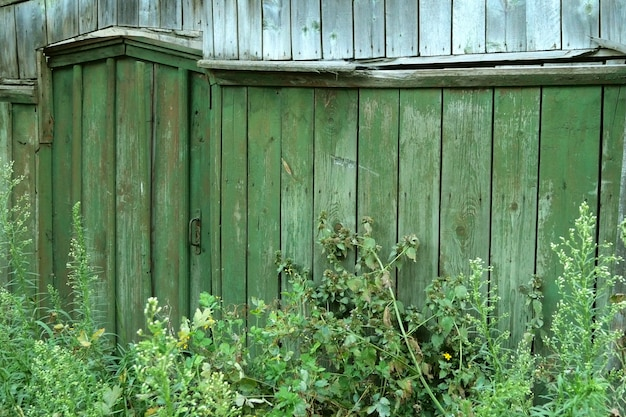 Geschlossene, grasbedeckte türen oder tor im hölzernen grünen zaun auf dem land. ländliche szene.