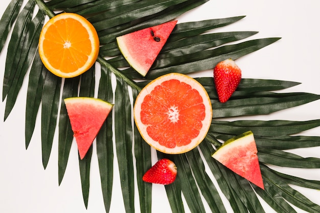 Geschnittene helle saftige wassermelonenerdbeerorange und -pampelmuse am palmblatt