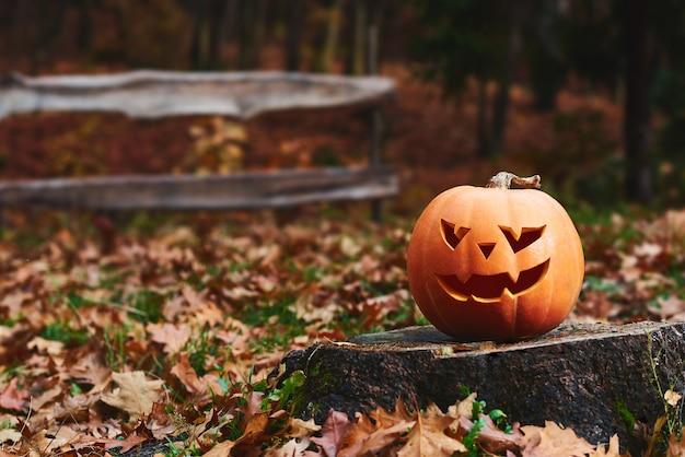 Geschossen von einem halloween-kürbis, der auf hölzernem sitzt