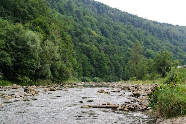 Gestalten sie nebenfluss unter den steinen landschaftlich, die durch berge und wälder umgeben werden