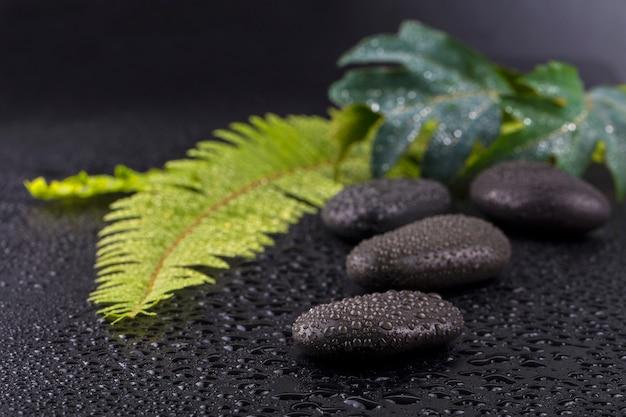 Gestapelter nasser badekurortstein mit grünem blatt selektiver fokus.tonbild