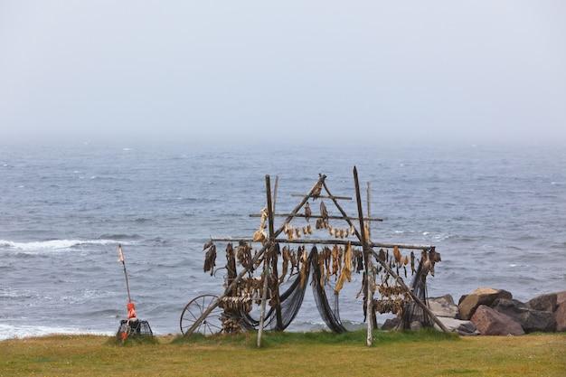 Gestell zum trocknen von fischen an der küste nordislands