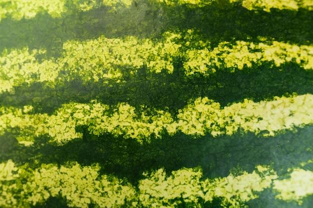 Gestreifte schale der reifen wassermelone. wassermelonenschale ka im vollbildmodus