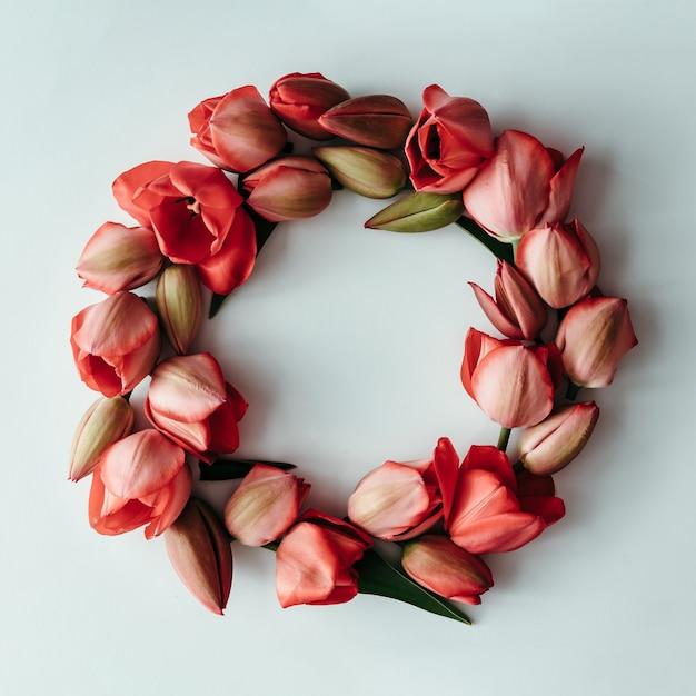 Gestyltes minimalistisches stillleben mit tulpenblumen auf weißem hintergrund. flach liegen.