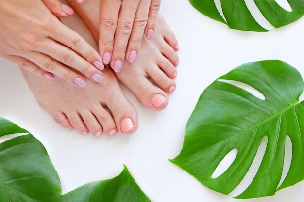 Gesunde beine mit schöner pediküre. wellness-hautpflege. frauenbeine und hände lokalisiert auf weißem hintergrund mit grüner monstera-blumenanlage. öko-maniküre- und naturkosmetik-konzept