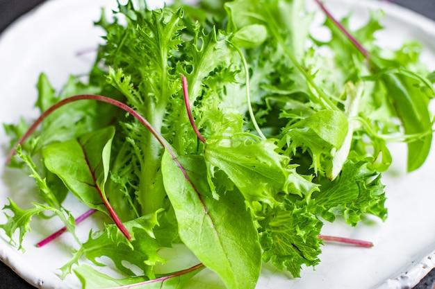 Gesunde salatblätter mischen salat mikrogrün naturprodukt