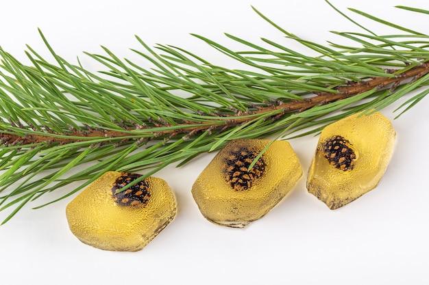 Gesunder veganer snack - natürliche geleemarmelade mit tannenzapfen innen auf weißem hintergrund. das konzept der richtigen ernährung und der gesunden ernährung. bio und vegetarisch süßes dessert kein auflauf. nahansicht