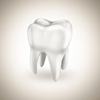 Gesunder weißer zahn auf hellem hintergrund