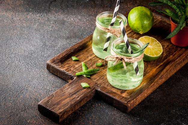 Gesundes exotisches detoxgetränk, aloe vera oder kaktussaft mit limette