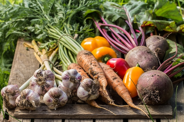 Gesundes organisches gemüse auf einer holzoberfläche