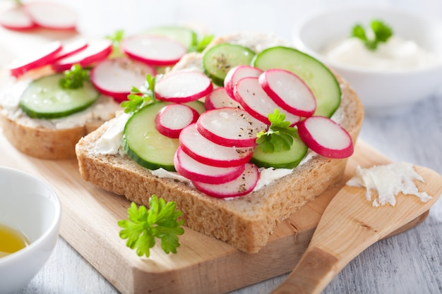 Gesundes sandwich mit radieschengurke und frischkäse