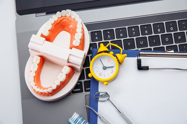 Gesundes zahnmodell mit zahnärztlichem werkzeug und wecker in der zahnarztpraxis. zeit für professionelle zahnhygiene