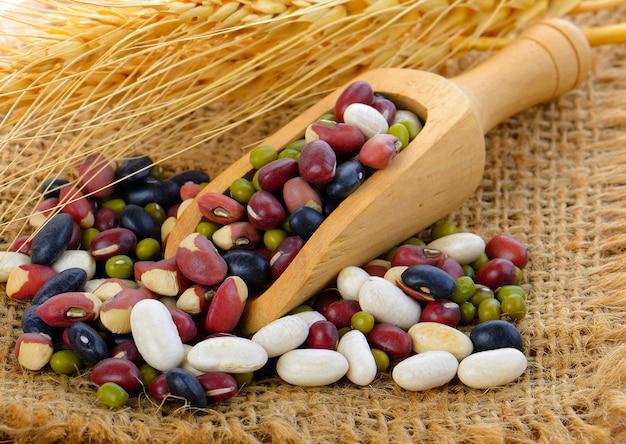 Getreide mischen bohnen in schaufel