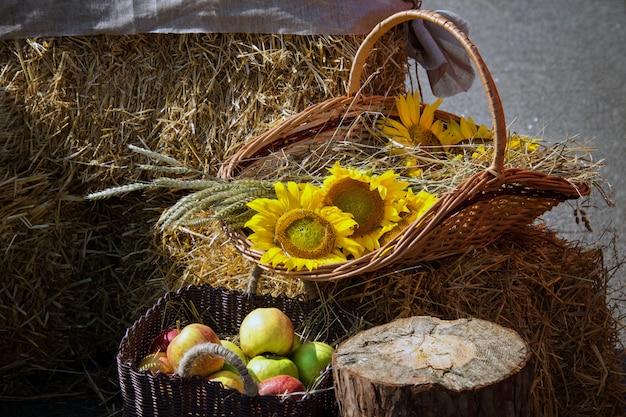 Getreideköpfe, äpfel und sonnenblumen. ernte auf dem heuhaufen