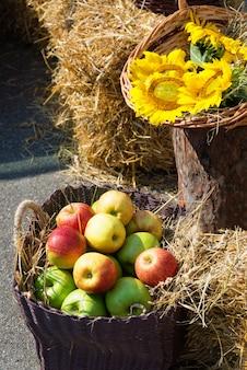 Getreideköpfe, äpfel und sonnenblumen.