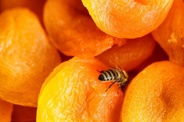 Getrocknete aprikose, nahaufnahmeansicht der getrockneten aprikosen von oben
