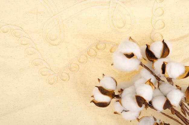 Getrocknete baumwollblumen auf baumwolltuchoberfläche