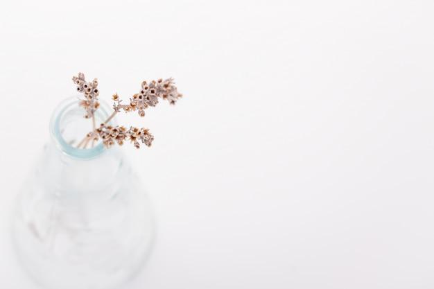 Getrocknete blumen in einer vase