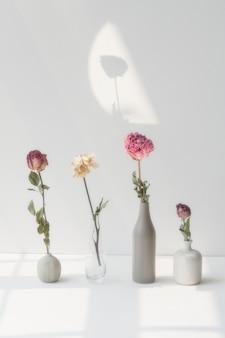 Getrocknete blumen in minimalen vasen