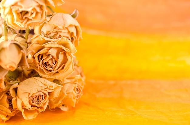 Getrocknete gelbe rosen