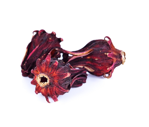 Getrocknete hibiskus-sabdariffa- oder rosellenfrüchte auf weiß.