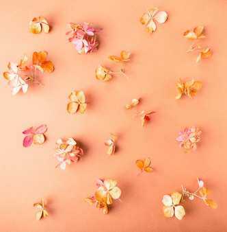 Getrocknete hortensienblüten auf braunem papier