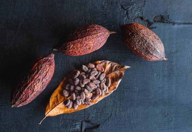 Getrocknete kakaobohnen und getrockneter kakao