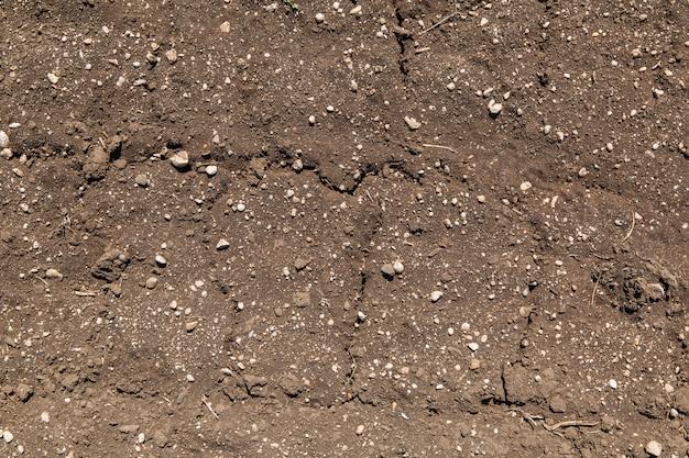 Getrocknete rissige erdboden-bodentextur