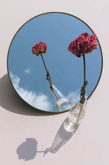 Getrocknete rosa pfingstrose in einer klaren vase, die auf einem spiegel reflektiert wird