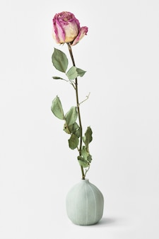 Getrocknete rosa rose in einer runden vase